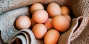 brown eggs - What's up with the eggs | sharonswalkabout.com