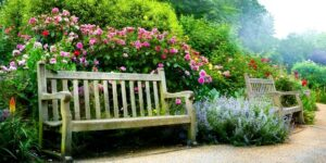 Park Bench surrounded by flowers along a path in an English Garden